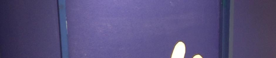 【画像レポ】今週の麦わらストア(6月9日)アラバスタフェア/夏袋/ルッチ誕生日他  #onepiece